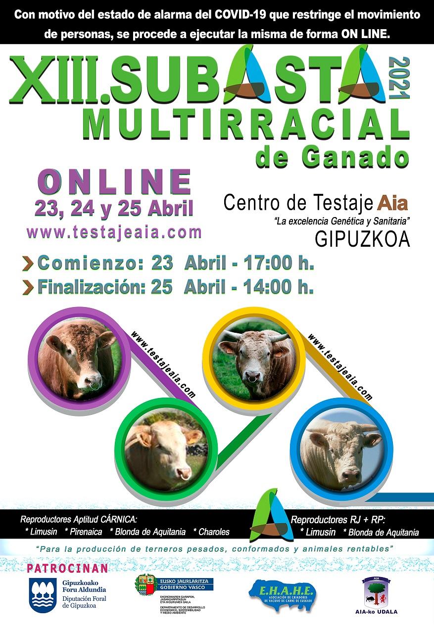 2021_04_25-Cartel-Anunciador-AIA-castellano